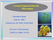 co2 sequestration (samadhan)