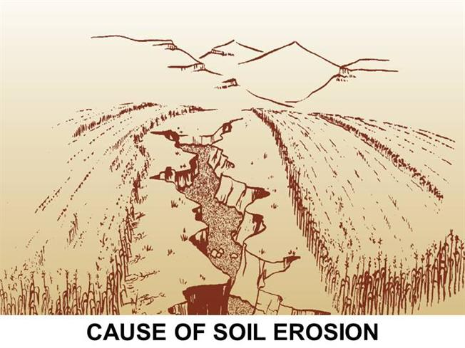 cause of soil erosion authorstream