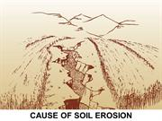 CAUSE OF SOIL EROSION