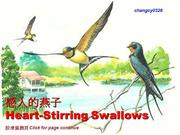 Heart-Stirring Swallows 讓你感動的燕子
