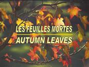 99733 Feuilles mortes (English-French)by Norbert Barnich