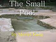 The Small Pool(Fixed)