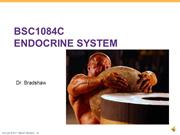 Lecture - Endocrine.ppt Audio