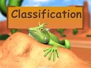5 kingdom classification_lizzard
