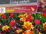 Dutch Flower Show-Fabulous Colours