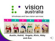 Vision Australia Online Pin&Win Induction 2012