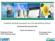 Feasibility Report for a Gas Based Power Plant