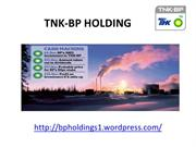 bp holdings capital management - TNK-BP HOLDING
