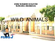 2.Wild animals