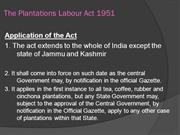 Plantations Labour Act