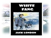 white fang  is a novel from jack london