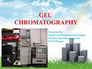 pradeep -gel chromatography
