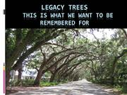 Legacy Trees. This is what we want to be remembered for.
