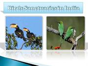 Birds Sanctuaries in India