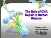 role of DNA repair inhuman disease