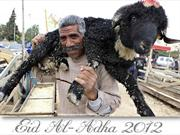 Eid al-Adha 2012 around the World