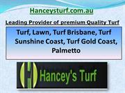 Turf Sunshine Coast, Turf Gold Coast, Turf Queensland