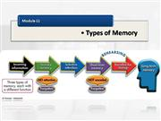 plotnik mod 11 types of memory