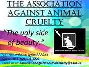 The Association Against Animal Cruelty