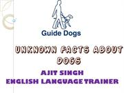 Unknown Facts About Dogs