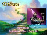 BARRY  WHITE    (TRIBUTE)