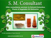 Consultant for Soya Nuggets Plant by S. M. Consultant, Indore