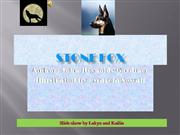 Stone Fox  by Lakyn and Kailia