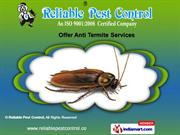 Vector Control Services by Reliable Pest Control, Pune