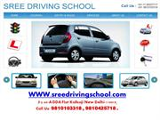 driving school in delhi,motor training school in delhi