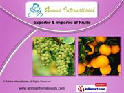 Fresh Fruits by Amma International, Chennai
