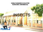 7.Insects