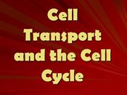 Cell Transport and the Cell Cycle