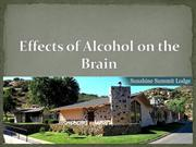 Sunshine Summit Lodge - Effects of Alcohol on the Brain