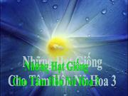 nhung_hat_giong