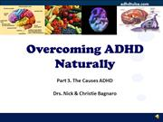 3 Causes of ADHD