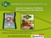 EDTA Fe Fertilizers by Vardhaman Crop Nutrients Pvt. Ltd.