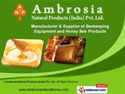 Fabrication Services by Ambrosia Natural Products (India) Pvt. Ltd.