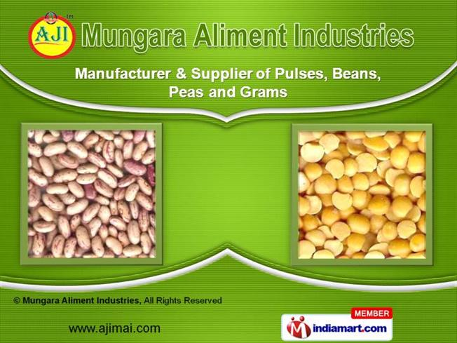 what is agro based industries