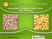 Agro Based Food Products by Mungara Aliment Industries, Paddhari