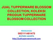 JUAL TUPPERWARE BLOSSOM COLLECTION, KOLEKSI PRODUK TUPPERWARE BLOSSOM