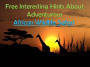 Free Interesting Hints About Adventurous African Wildlife Safari