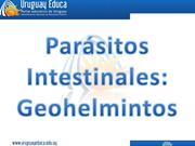 Parásitos intestinales
