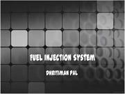 Fuel Injection System final