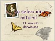 seleccion natural