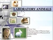 LABORATORY ANIMALS PPT