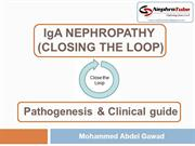 IgA NEPHROPATHY (CLOSING THE LOOP) - Pathogenesis & Clinical guide