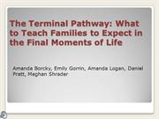The Terminal Pathway