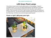 LED Green Plant Lamps