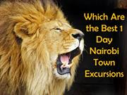 Which Are the Best 1 Day Nairobi Town Excursions