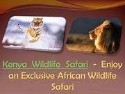 Kenya Wildlife Safari - Enjoy an Exclusive African Wildlife Safari